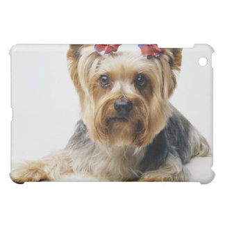 Yorkshire terrier wearing red bows case for the iPad mini