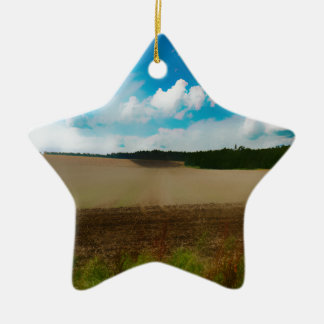 Yorkshire, with a artistic blur ceramic star decoration