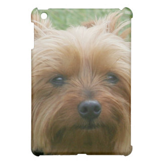 Yorshire Terrier Ipad speck case Cover For The iPad Mini