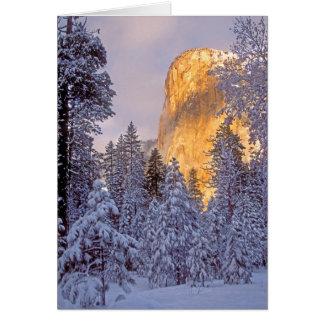 Yosemite - El Capitan lit by sunlight Greeting Card
