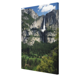 Yosemite Falls and Valley Canvas Print