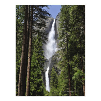 Yosemite Falls, Yosemite National Park Postcard