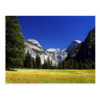 Yosemite Meadows Postcard