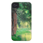 Yosemite Misty Reflections Park iPhone 4 Cases