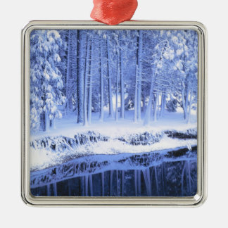 YOSEMITE NATIONAL PARK, CALIFORNIA. USA. Fresh Christmas Ornament