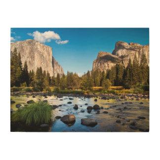 Yosemite National Park, California Wood Wall Decor