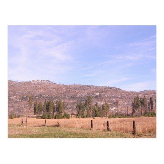 Yosemite National Park in California PostCard