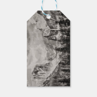 Yosemite Park in Winter Gift Tags