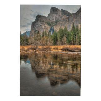 Yosemite Scenic Falls Wood Wall Decor