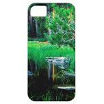 Yosemite Siesta Lake Park iPhone 5 Cover
