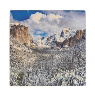 Yosemite Valley in Snow Wood Coaster