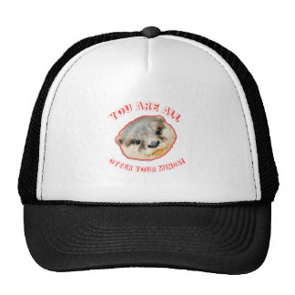 You Are All Otter Your Minds - Animal Pun Cap