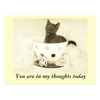 You are in my thoughts today postcard