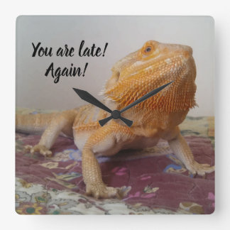 You are late Funny Bearded Dragon Square Wall Clock