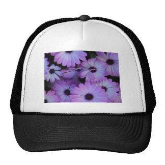 You are my Daisie Trucker Hat