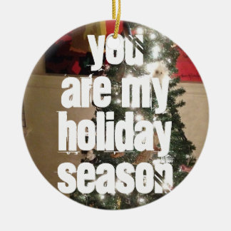 You are my holiday season ornament