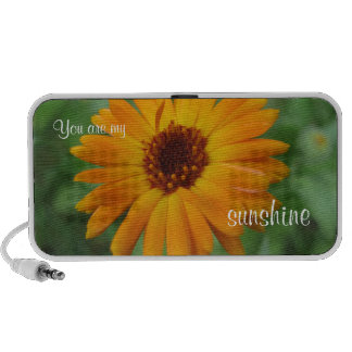 You Are My Sunshine Mp3 Speakers