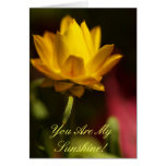 You Are My Sunshine! Stationery Note Card