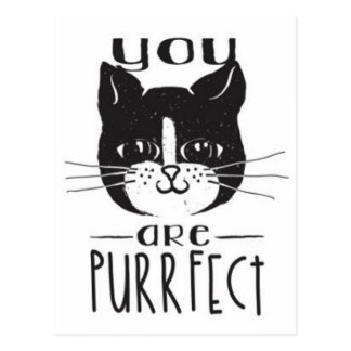 You Are Purrfect Postcard