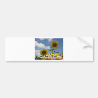 You Are The Sunshine of My Life Bumper Sticker