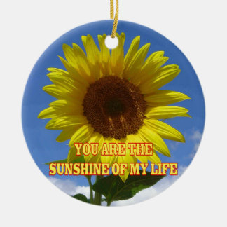 You are the Sunshine of My Life Christmas Ornament