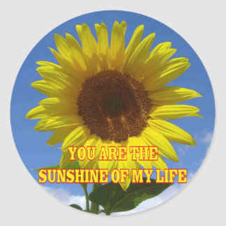 You are the Sunshine of My Life Round Sticker