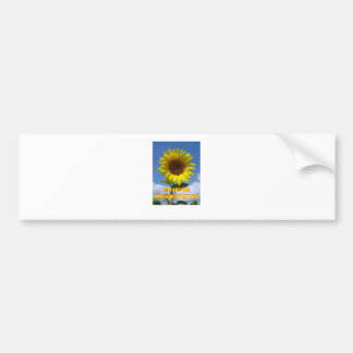 You are the Sunsine of My Life Bumper Sticker