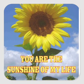 You are the Sunsine of My Life Square Sticker