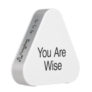 You Are Wise Speaker