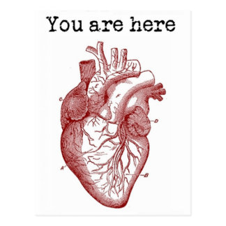 You areHere in my Heart Postcards