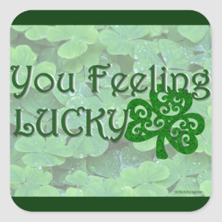 You Feeling Lucky - St. Patty's Day Square Sticker