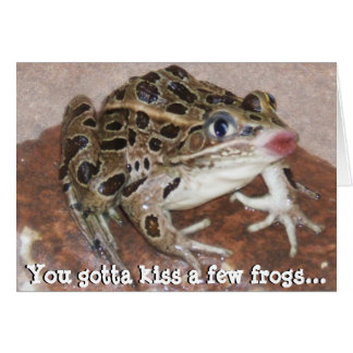You Gotta kiss a few Frogs Greeting Card