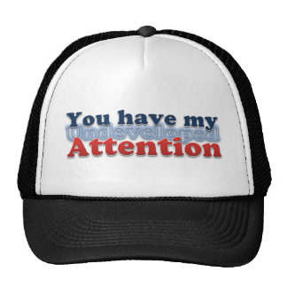 You have my Undeveloped Attention Mesh Hat