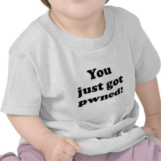 You just got pwned! shirts