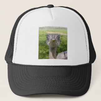 You looking at me? trucker hat