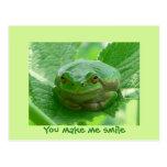 You make me smile - green frog