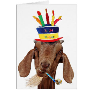 You Ol' Goat Greeting Card