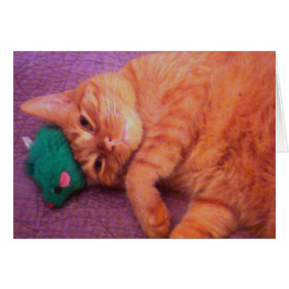 You re Always On My Mind Cat Greeting Card