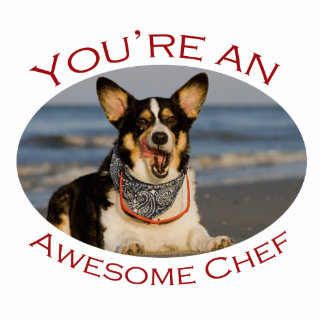 You re an Awesome Chef Acrylic Cut Out