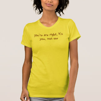 you re are right it s you not me t-shirt