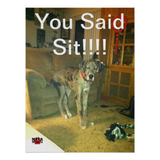 You Said Sit!!!! Poster