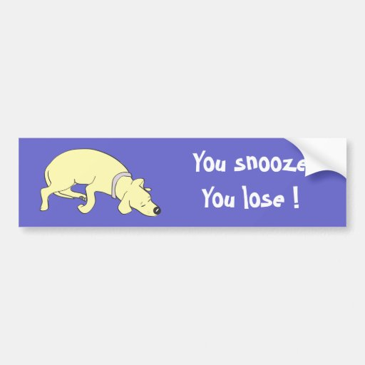 You snooze You lose bumper sticker !