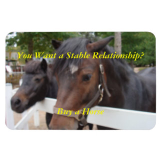 You Want a Stable Relationship? Buy a Horse Rectangular Photo Magnet