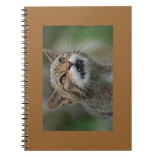 You Will Be Lunch notebook