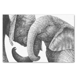 Young African Elephants Tissue Paper
