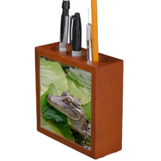 Young Alligator Desk Organiser
