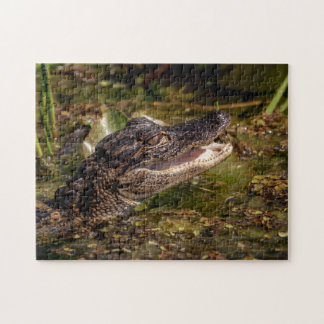 Young Alligator Jigsaw Puzzle