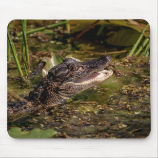 Young Alligator Mouse Mat