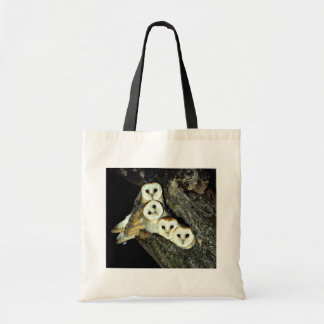 Young barn-owls, 9 weeks old budget tote bag