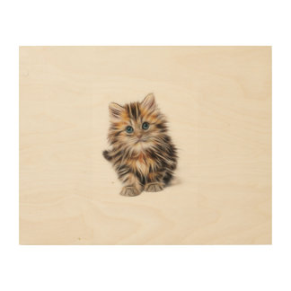 Young beautiful Cat Wood Canvas